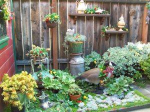 garden Xmas 003